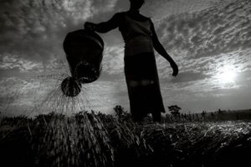 Inauguración de la exposición Madzi, El agua en Malawi