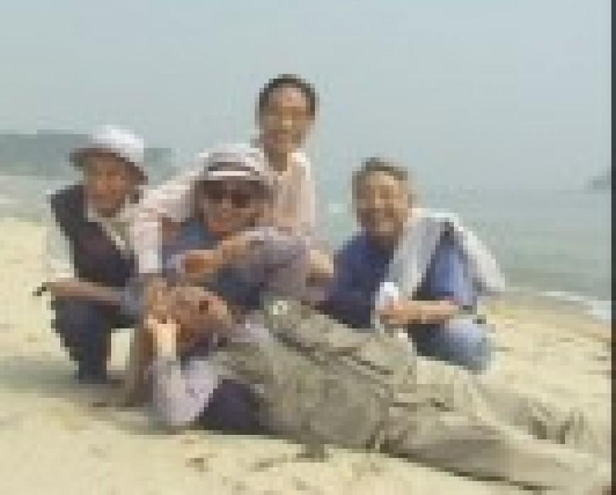 Alcances trae a Cádiz el desconocido cine documental de Corea del Sur