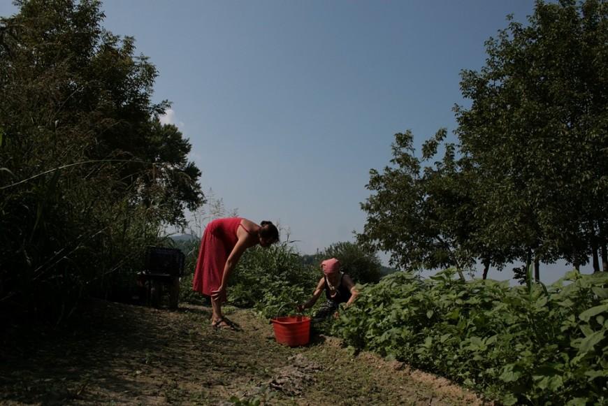'El lugar de las fresas' de Maite Vitoria Daneris se alza con la Caracola  al Mejor Largometraje de Alcances 2016