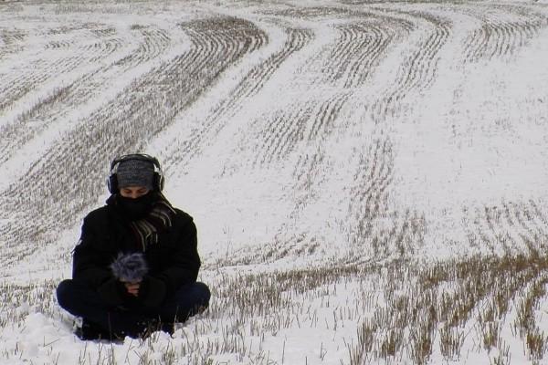Imagen principal No cow on the ice