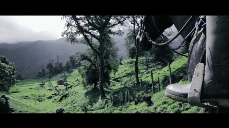 Imagen de película: Jabalí