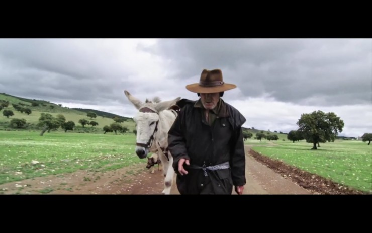 Imagen película Donkeyote