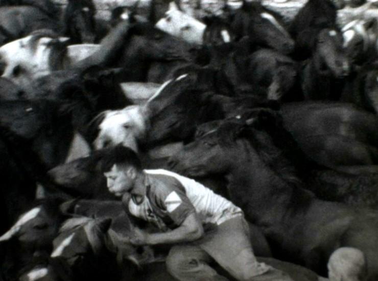 Imagen película Rapa das bestas