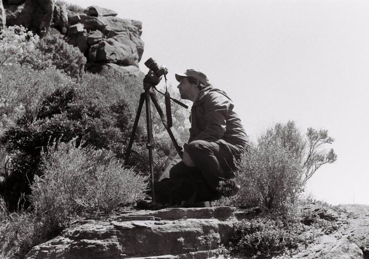 Imagen película Pedra pàtria
